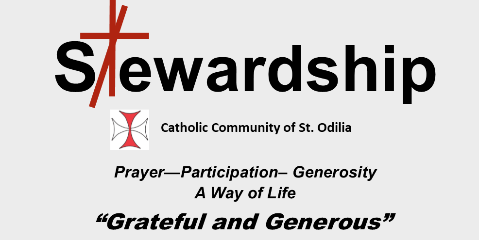 Stewardship 2020 - Covenant Pledge